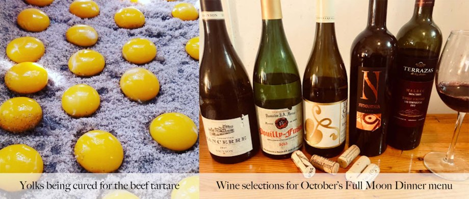 yolk and wine OCT 24